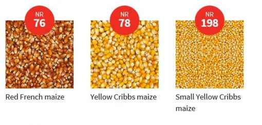 Vanrobaeys Mais Mix 2.5kg